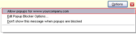 Disable pop ups OpenCms